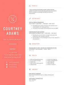 canva resume builder cv